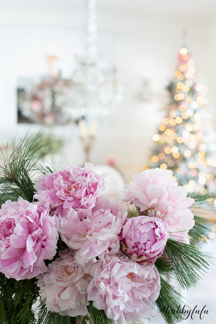 beautiful pink peony picture christmas