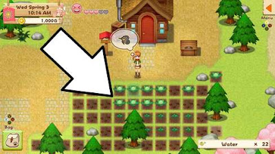 Fast Money Harvest Moon: Light of Hope from Cheats
