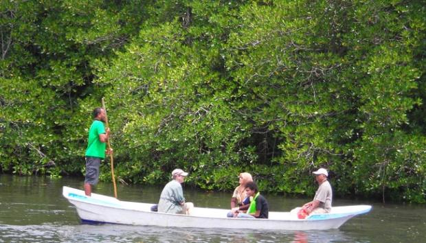 foto wisata mangrove di nusa lembongan