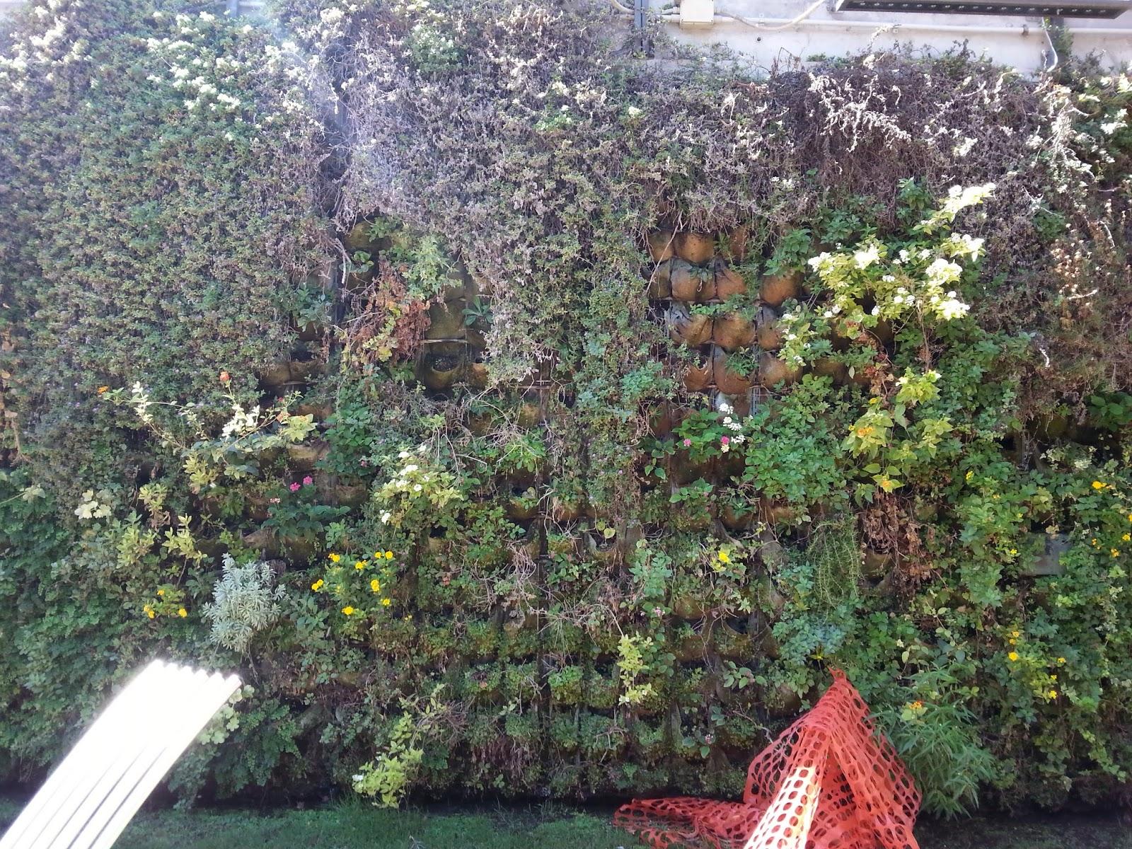 Un altro splendido giardino verticale ed il nostro - Giardino verticale madrid ...