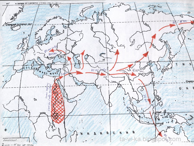 лента времени в виде контурных карт history maps