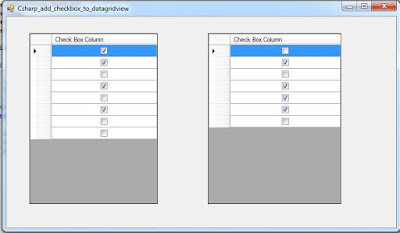 C# DataGridView CheckBox Column