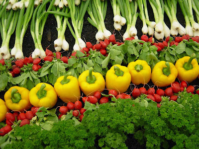 Organic farming - vegetables