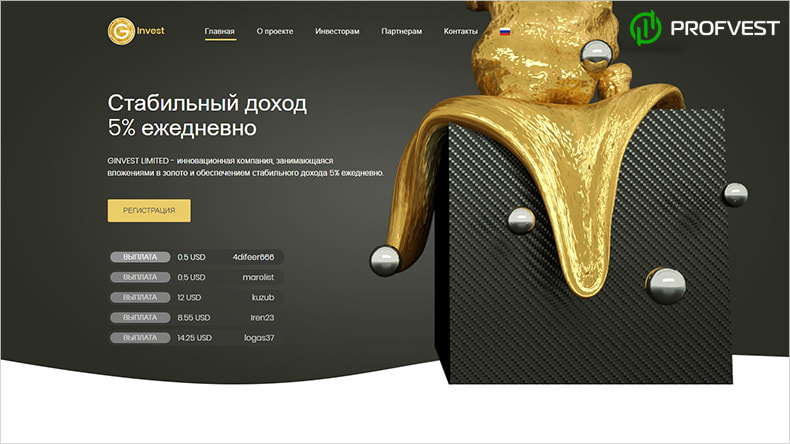 Ginvest обзор и отзывы HYIP-проекта