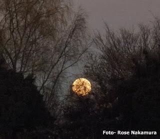 linda foto da lua