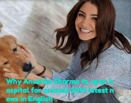 Why Anushka Sharma to open hospital for animals 2019 latest news in English