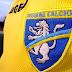 Il Frosinone Calcio primo club calcistico a lanciare una campagna di crowdfunding