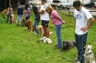 jorna pedagógica de mascotas