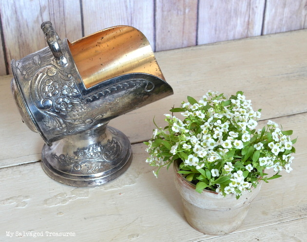 use a silver caddy to hold a small potted plant