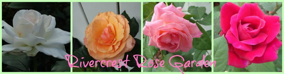 Rivercrest Rose Garden