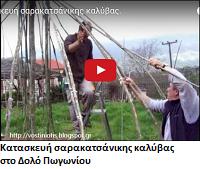 http://vostiniotis.blogspot.gr/2016/01/blog-post_8.html