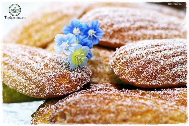 Gartenblog Topfgartenwelt Buchtipp Französisch Backen mit Rezept für Madeleines: schnelles Rezept für 24 Stück