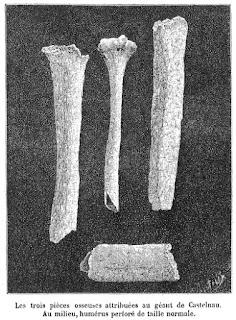 Huesos Gigante de Castelnau