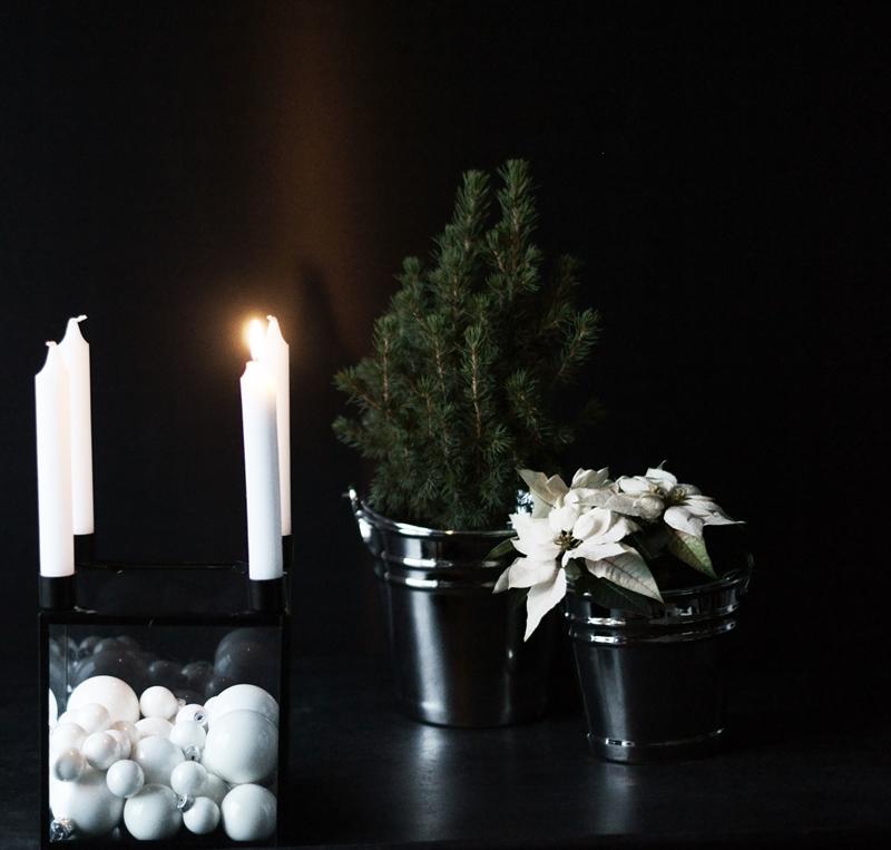 Blog + Fotografie by it's me! - Adventskranz, Zuckerhutfichte und Weihnachtsstern mit brennender Kerze