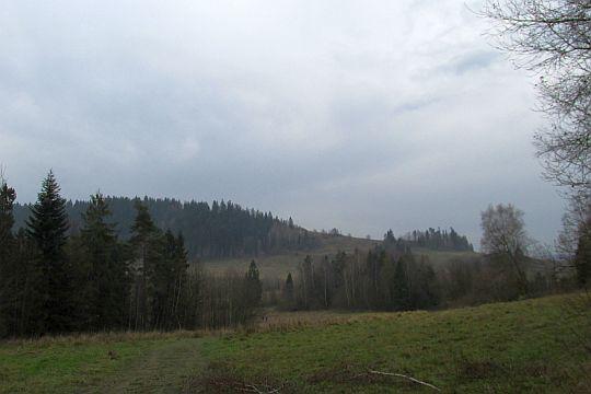 Widok na Grzebień (677 m n.p.m.) ze stoku Królewskiej Góry.