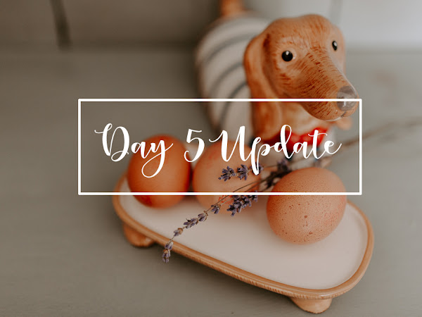 THE EGG FAST // DAY 5 UPDATE