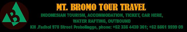 Mt Bromo Tour Packages