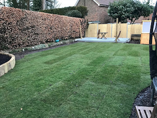 re-turfing