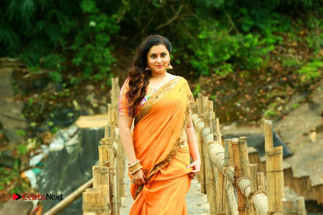 Actress Namitha Stills in Saree from Pulimurugan  0002.jpg