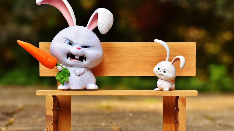 Funny Bunny 2