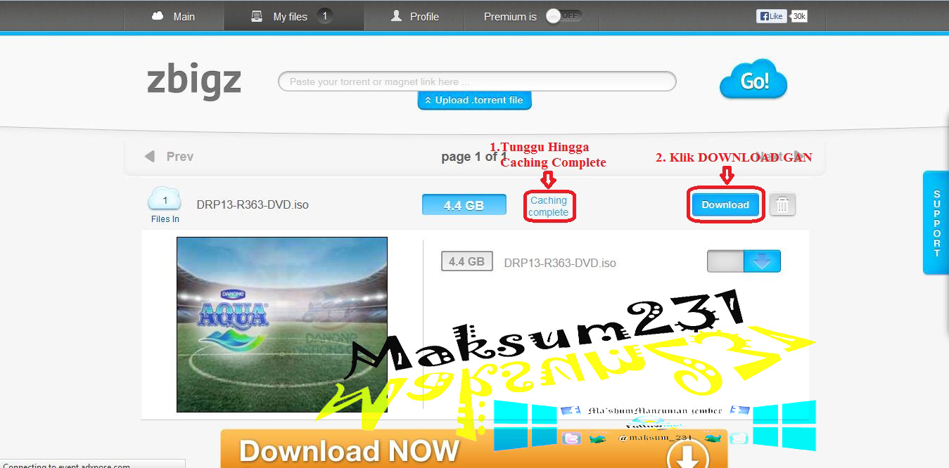 how to download big torrent file with idm free