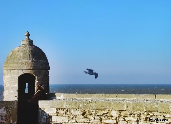 Skala-de-la-Ville-Essaouira