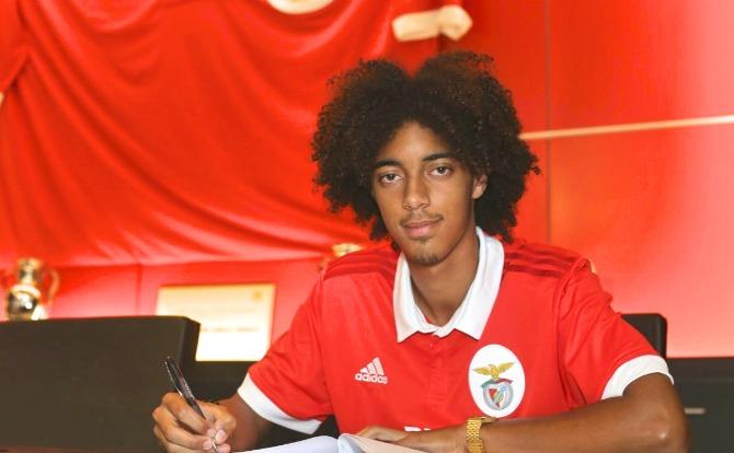 Blogs Benfica Tomás Tavares Formação