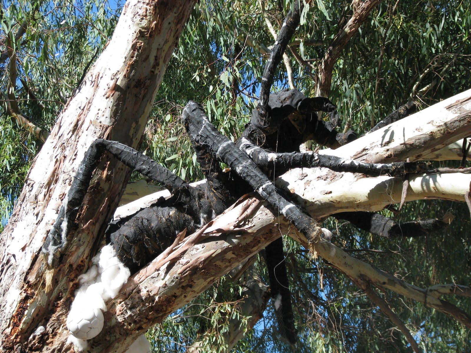 giant spider webs in trees. Black Bedroom Furniture Sets. Home Design Ideas
