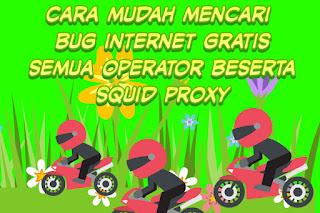 Cara mudah mencari bug internet gratis semua operator beserta squid proxy