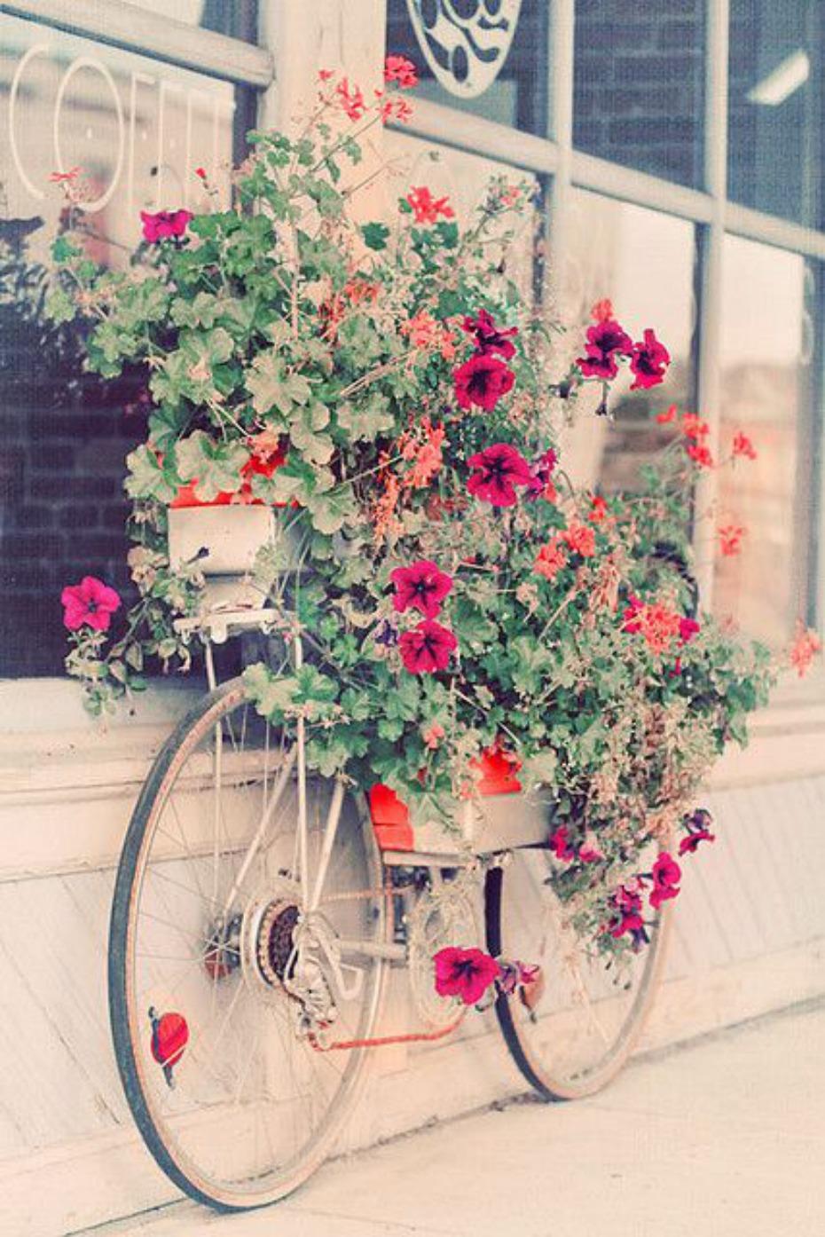 Antigua bicicleta con flores