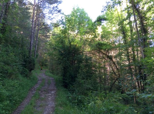 Caminant pels voltants de Sant Antoni