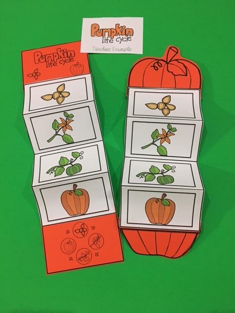 Pin by Lina AbiDaher on Preschool idea Pumpkin life