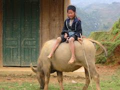 Etnia Hmong de Traje Vietnamita oscuro negro