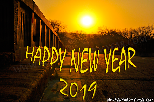 2019 happy new year pictures