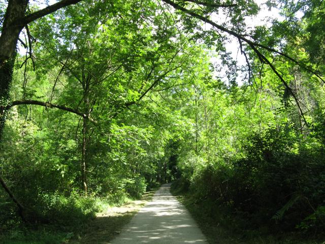 Ekainberri, camí de la cova