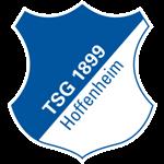 Daftar Lengkap Skuad Nomor Punggung Nama Pemain Klub TSG 1899 Hoffenheim Terbaru 2016-2017