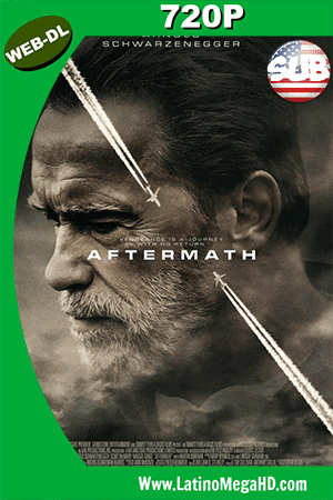 Aftermath: Una Historia De Venganza (2017) Subtitulado HD Web-Dl 720p ()