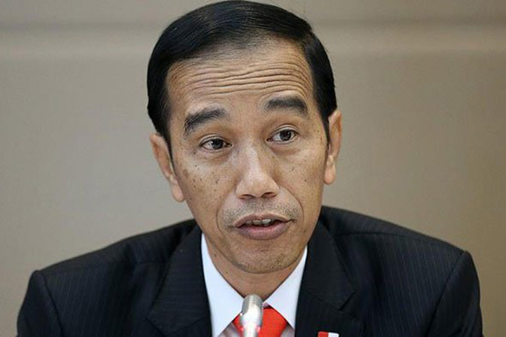 Action needs against Myanmar, not condemnation: Indonesia