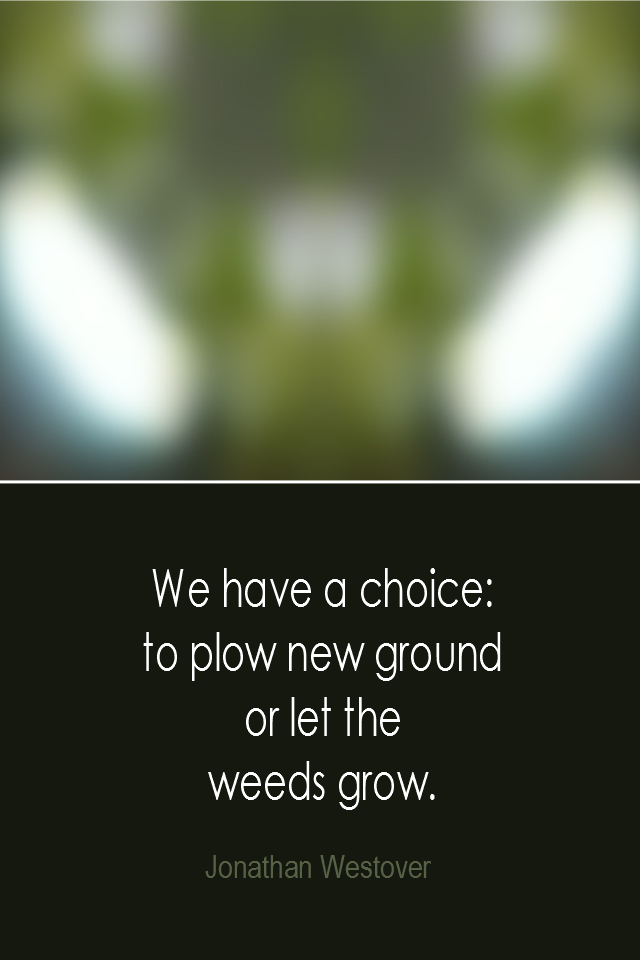 visual quote - image quotation: We have a choice: to plow new ground or let the weeds grow. - Jonathan Westover