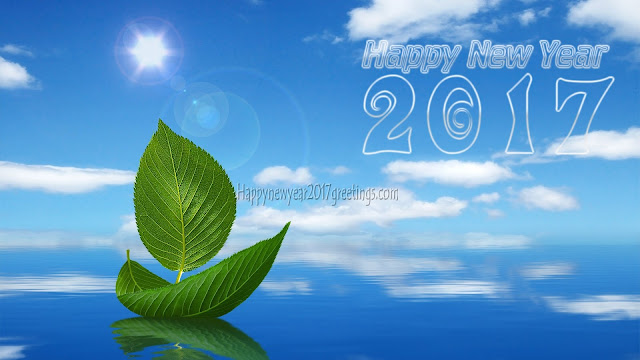 Happy New Year 2017 HD Nature Background Wallpapers