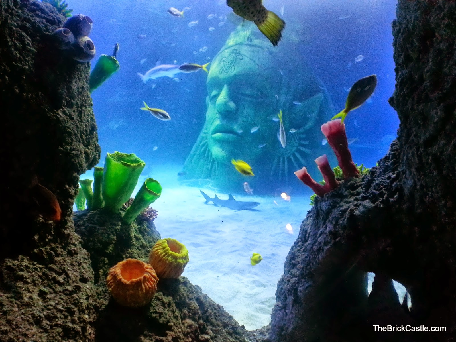 SeaLife Trafford Centre Manchester Review