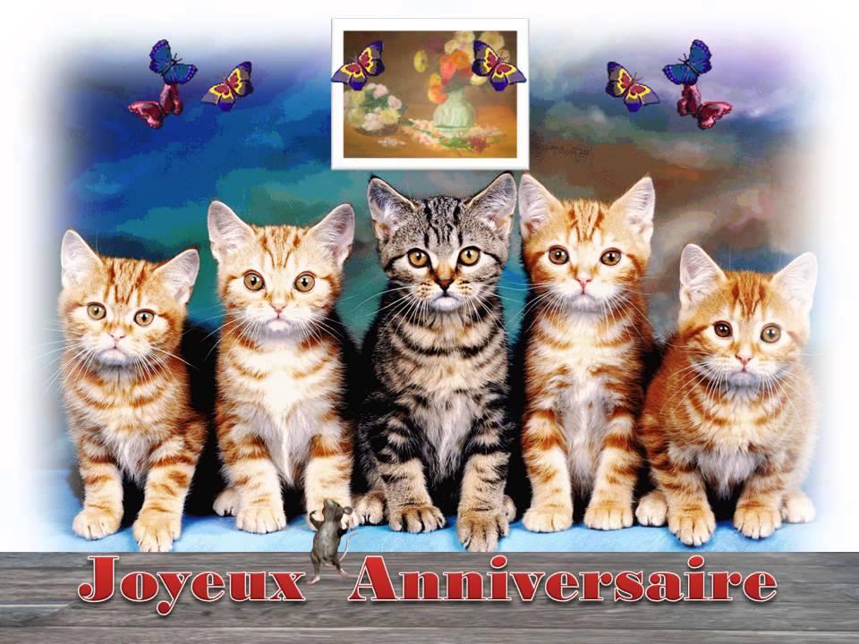 Citation - Carte anniversaire humour avec la photo dun