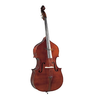 Giá bán đàn violin Pearl River Double Bass B040 tại tphcm