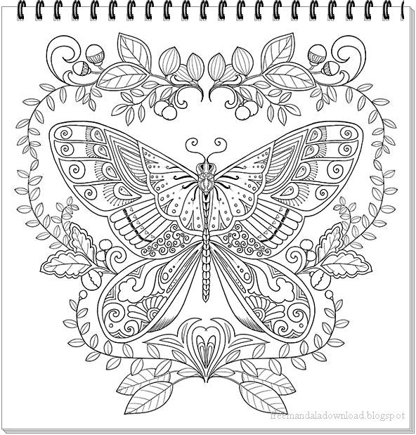 schmetterling mandalabutterfly mandala free printable