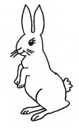 Ariyo 4a Reguler B Rpp Kelas 2 Sd Menyebutkan Ciri Ciri Tumbuhan Dan Binatang