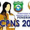 BKPPD Pangkep Umumkan Formasi CPNS 2018