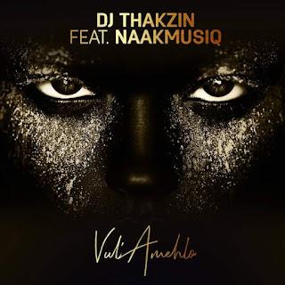 Dj Thakzin Feat. NaakMusiQ – Vul'amehlo