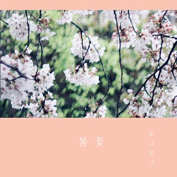 Mogmog – Cherry Blossom – Single