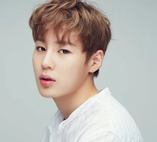 Ha SungWoon, Biodata ha sungwoon, Profil ha sungwoon, Ha sungwoon profile, Fakta ha sungwoon, Foto ha sungwoon, Ha sungwoon wanna one, 하성운,