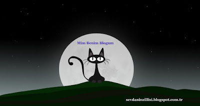 Mim Benim Blogum